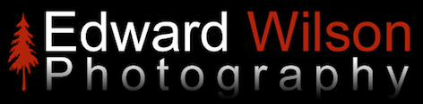Edward Wilson Photography Logo